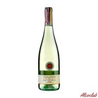 Купить в Киеве с доставкой Вино Monvin Bianco Frizzante 10,5% 20л Италия